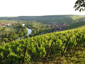 Wagenbrenner, Weinlandfahrt Nr. 3