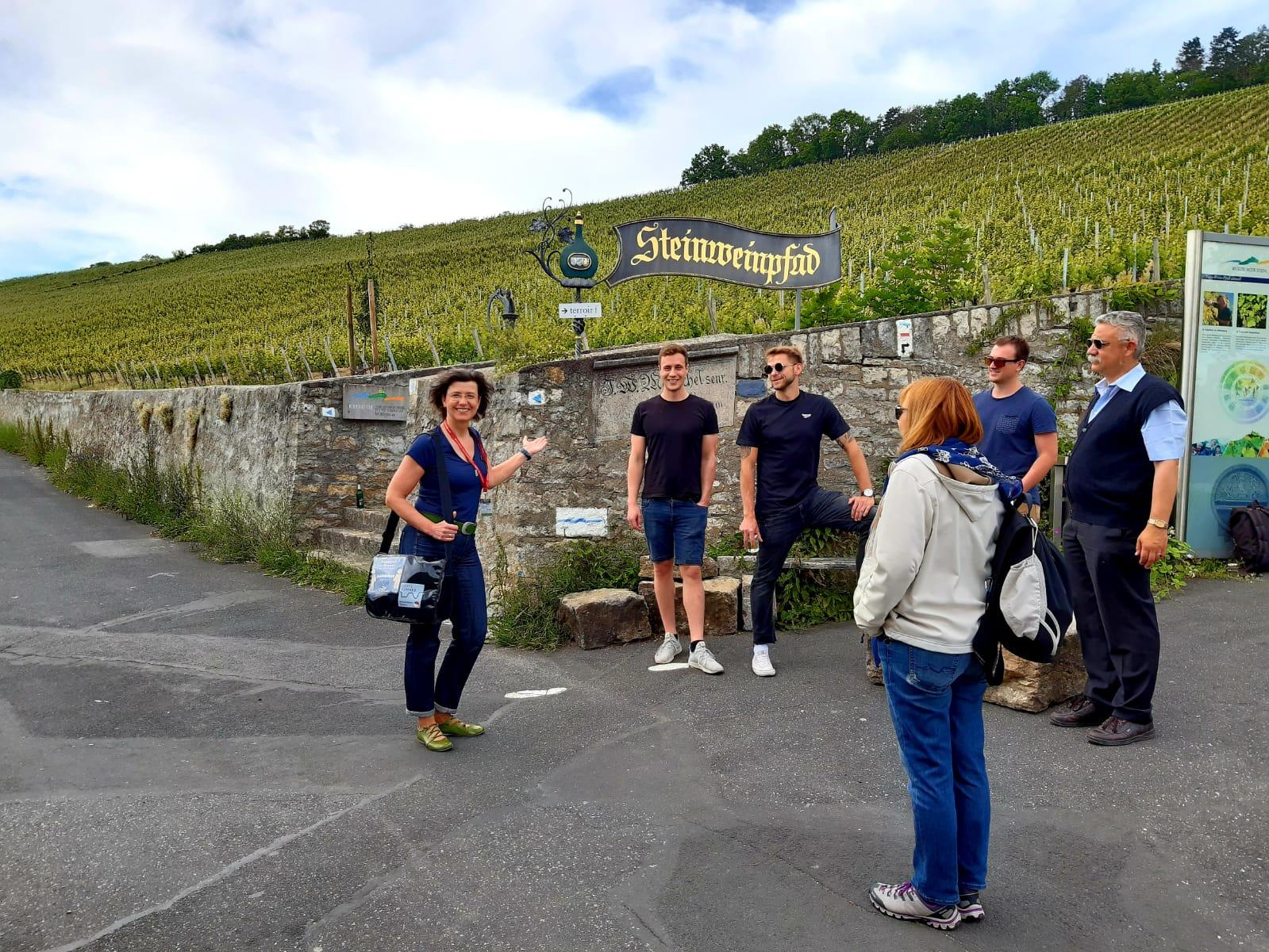 Öko-logisch? Zu Umwelt- und Klimaaspekten im Weinbau